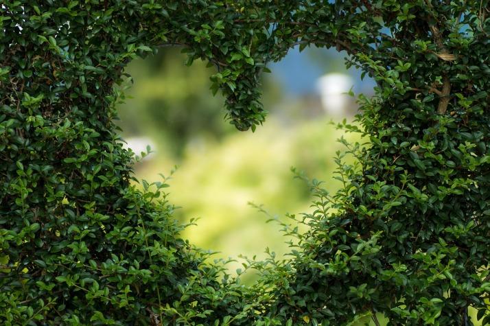Herz_Liebe